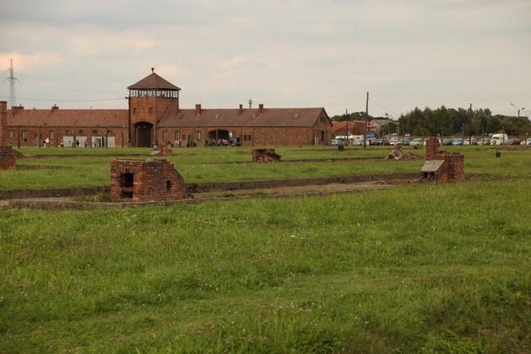 De nombreux scientifiques analysent les briques, le bois, le métal, pour tenter de freiner l'usure du temps sur les vestiges de l'ancien camp.