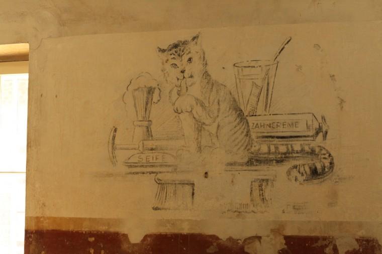 Sur le 3ème mur de la pièce, un dessin de chat. Cette peinture est sans doute semi-clandestine. Elle a pu être commandée par un gardien à un artiste déporté.